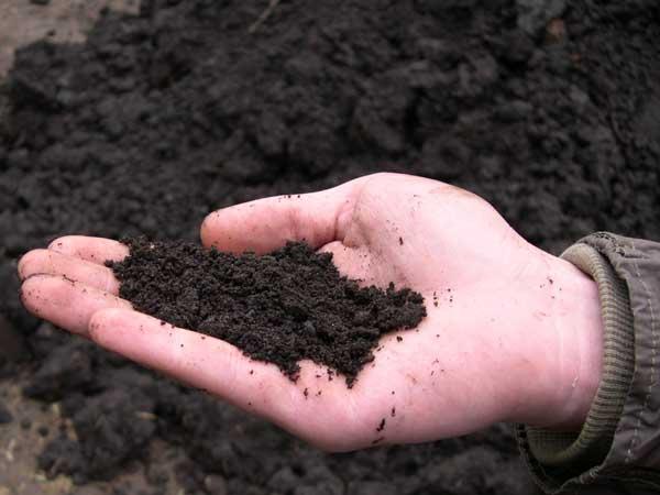 Новообраних сільських голів вчитимуть, що робити із землею