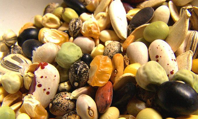 У Луцьку цілий ярмарок відведуть для насіння