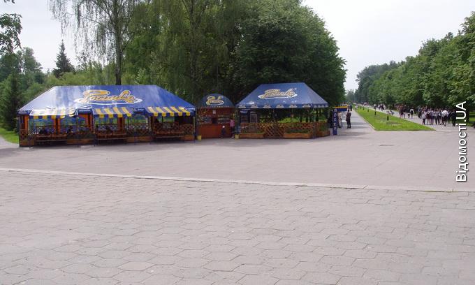 За світло у Центральному парку Луцька попросять заплатити приватний бізнес