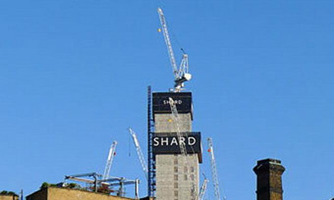 У лондонському хмарочосі на 72 поверсі оселилося лисеня