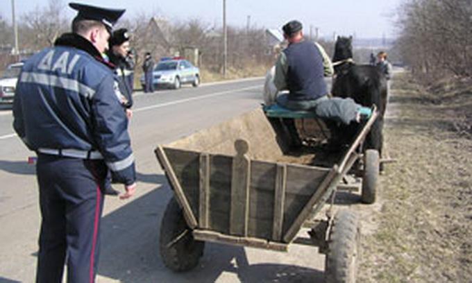 Волинські даішники перевіряють гужовий транспорт