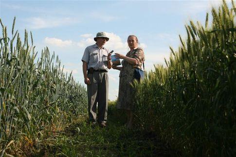 Волинські аграрії та фермери об'єднуються у федерацію