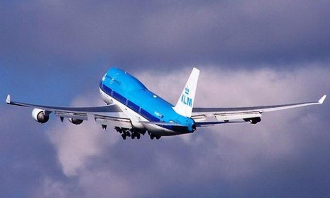 Голландські літаки заправлятимуть соняшниковою олією