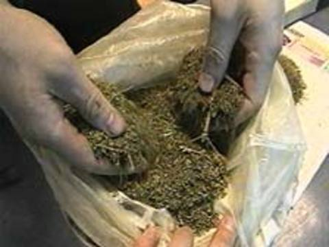 Студент-другокурсник продавав марихуану перед заняттями