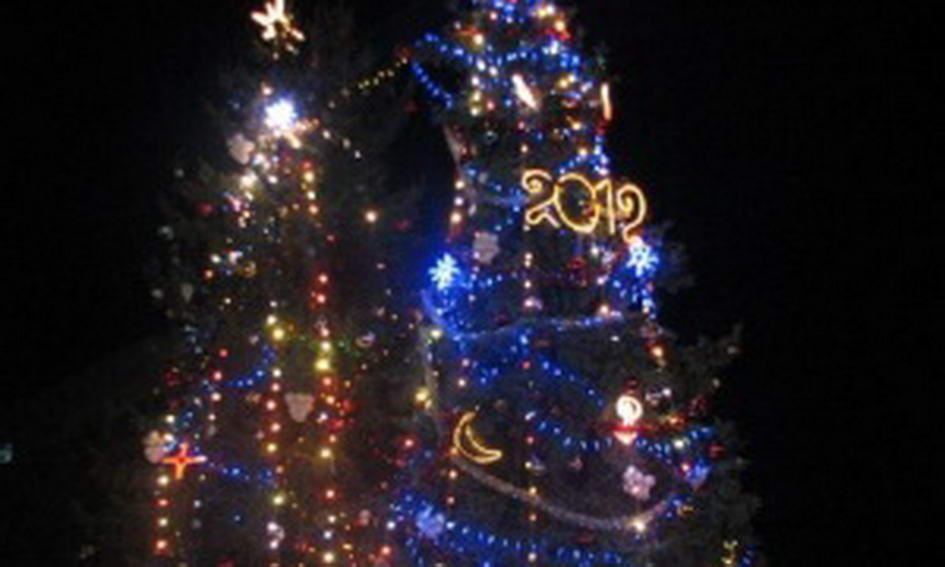 У Луцьку запалили новорічну ялинку