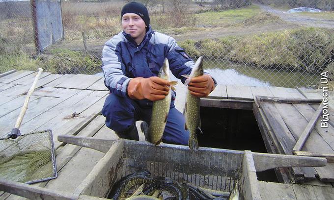 Волинську рибу на ринки Луцька не пускають?