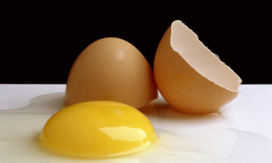 Серед причин гострих кишкових інфекцій у волинян – яйця