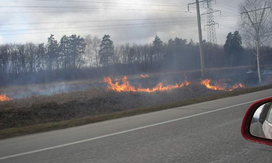 Сільські ради платитимуть пожежникам за гасіння сухої трави
