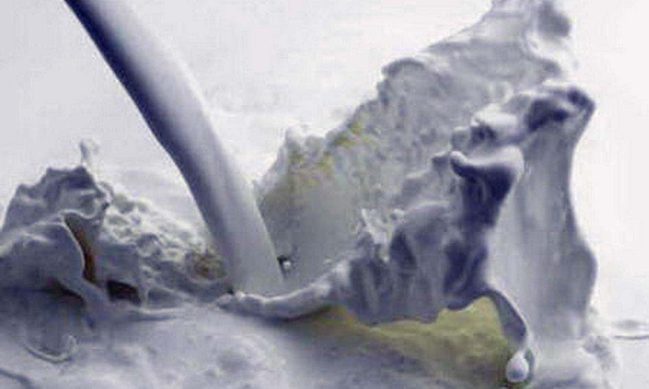 За здане молоко переробні підприємства заборгували волинянам 12 мільйонів