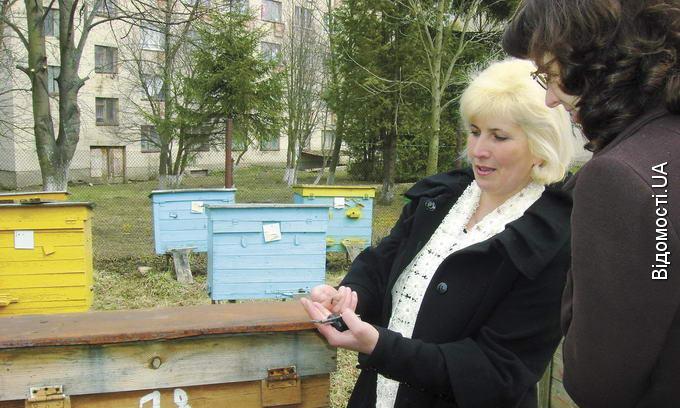 Жінка-пасічник із Горохова сама майструє вулики й навчає бджолярів
