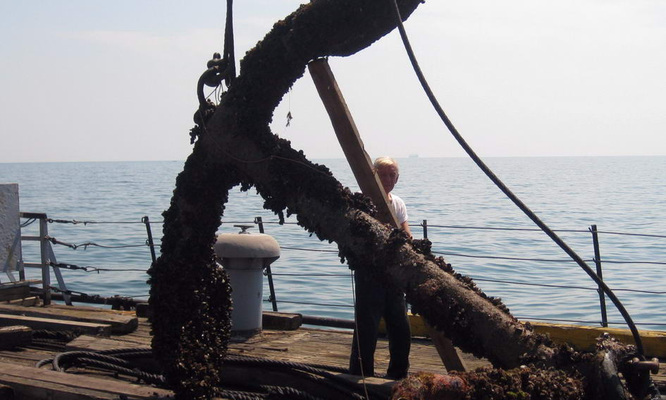 З дна Чорного моря підняли столітній якір