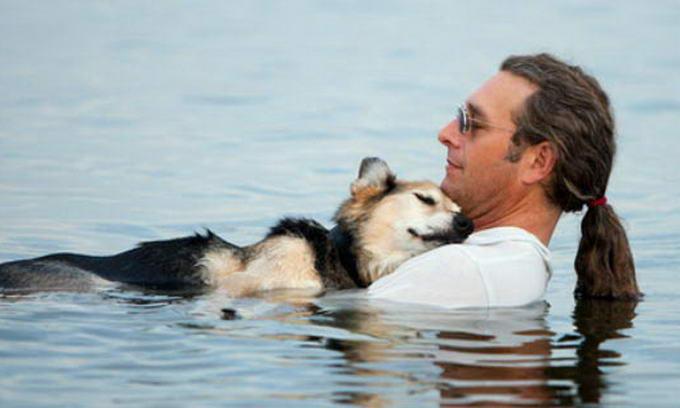 Американець щодня носить хворого пса до озера, щоб той хоч трохи поспав