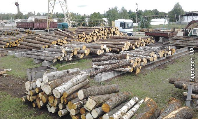 Маневицький лісгосп б'є рекорди з заготівлі деревини та консервацій