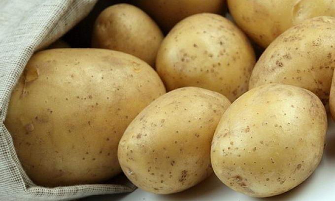 Картопля в цьому сезоні буде дешевою