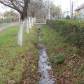 У Володимирі-Волинському каналізація стікає у річку