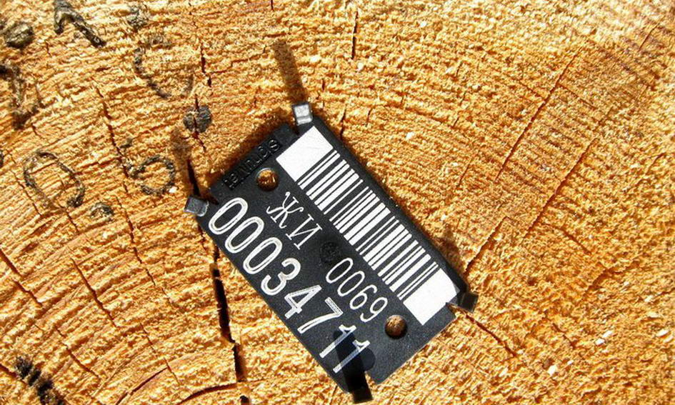 До лютого всі лісгоспи перейдуть на електронний облік деревини