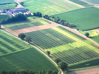 Електронна кадастрова карта зможе усунути помилки в системі земельного кадастру