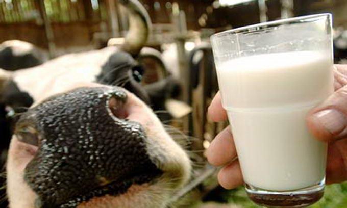 Україна заборонила ввозити молочну продукцію з трьох білоруських підприємств