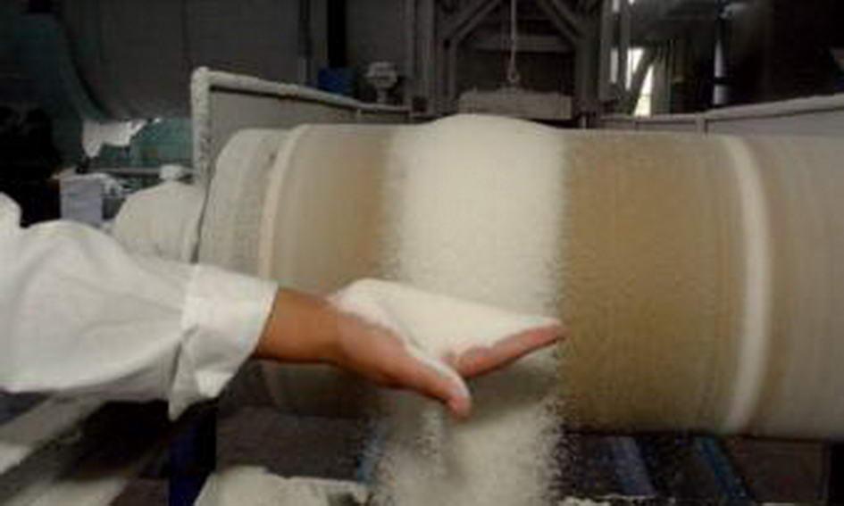 В Україні виробили 400 тисяч тонн цукру понад внутрішню потребу