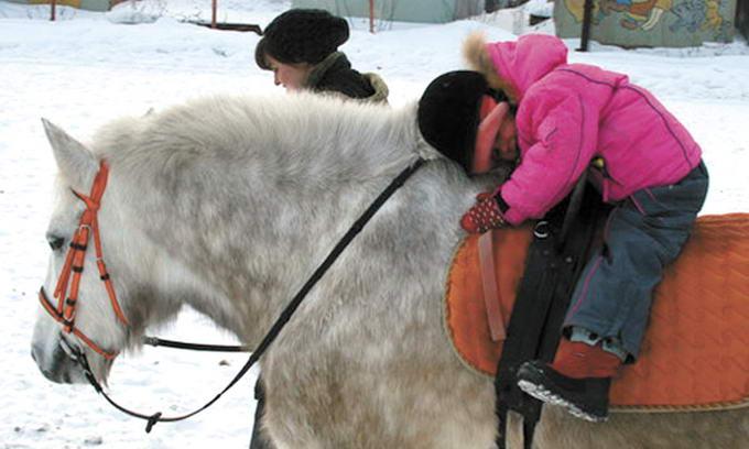 Лікування кіньми — остання надія для багатьох хворих людей