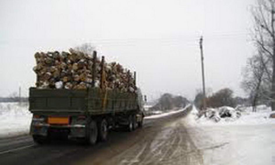 Волинські даішники затримали кілька вантажівок із деревиною