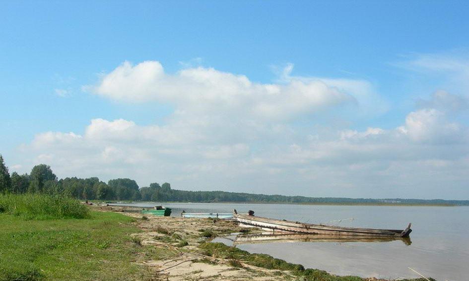 Землю на березі озера Світязь продадуть із земельних торгів