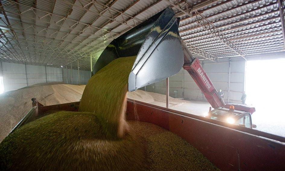 Україна суттєво наростила експорт зерна