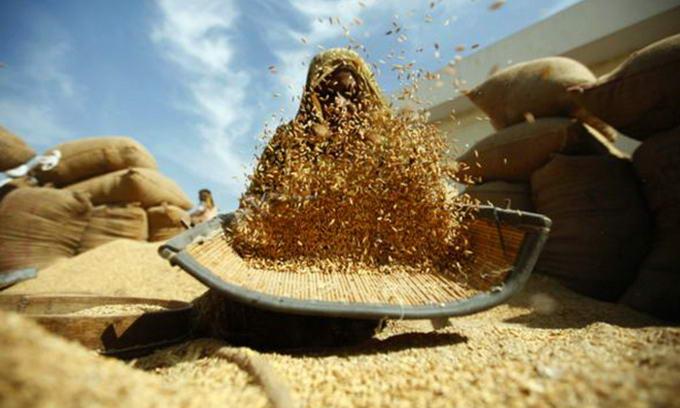 Вивозити зерно з України тепер можна в необмежених кількостях