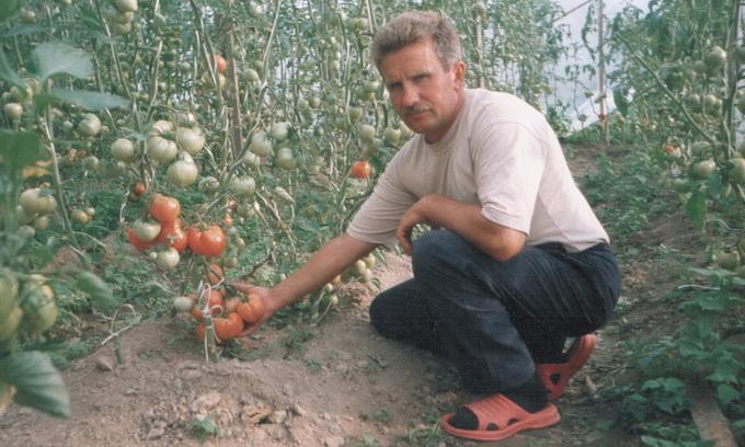 У Польщі волинський овочівник зрозумів, що заробляти можна і на десяти сотках
