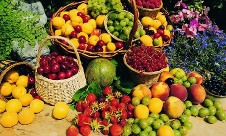 Сховища мають забезпечити українців доступними овочами і фруктами у міжсезоння