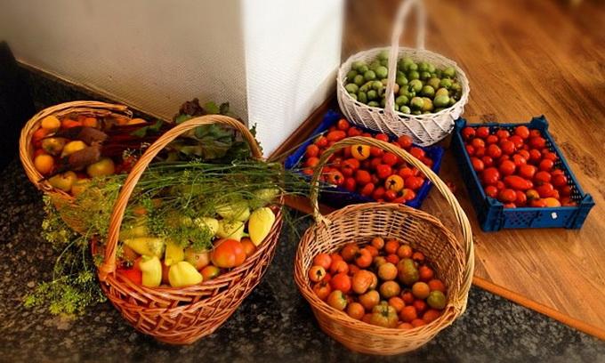 Овочі в Україні рекордно подешевшають