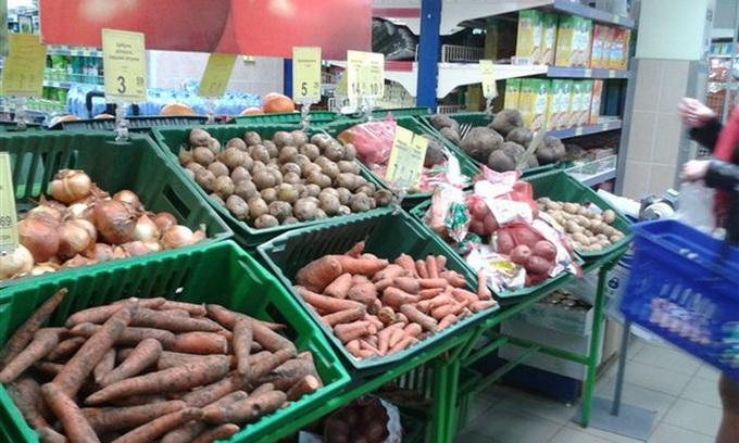 Україна продовжує нарощувати виробництво овочів