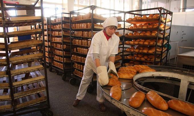 В Україні стрімко скорочується виробництво хліба