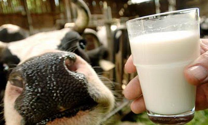 Українці більше питимуть молока
