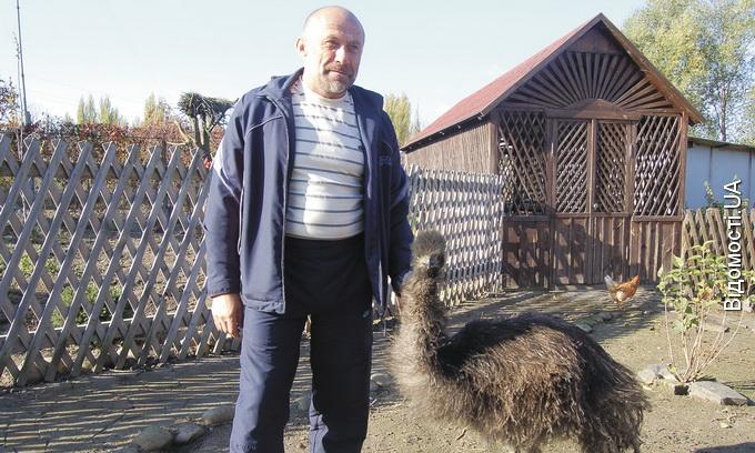 У селі під Луцьком мешкають страуси та фазани