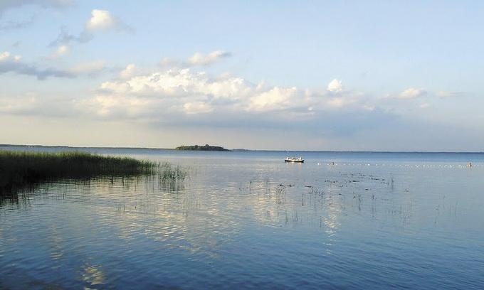 Озеро Світязь може перетворитися на болото?