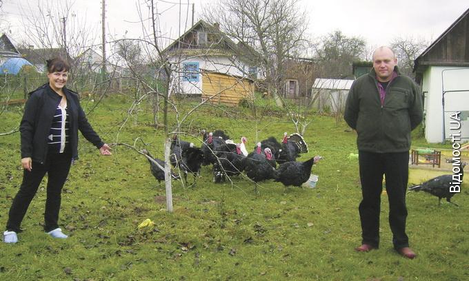 По досвід ведення господарства — у Журавичі до Панчуків