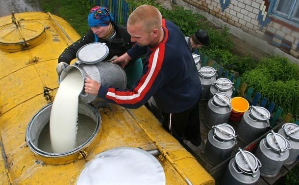Прикарпатські селяни стали жертвами «молочних аферистів»