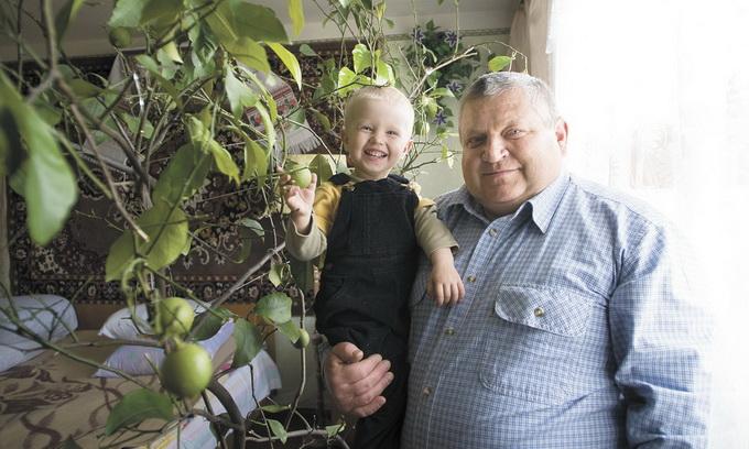Маневиччанин вирощує вдома лимони