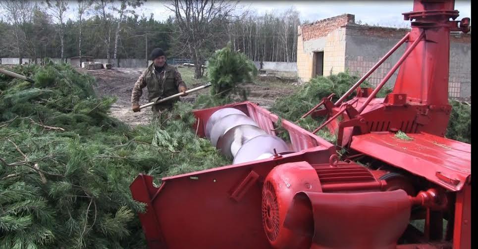 Маневицький лісгосп єдиний в Україні випускає хвойний екстракт