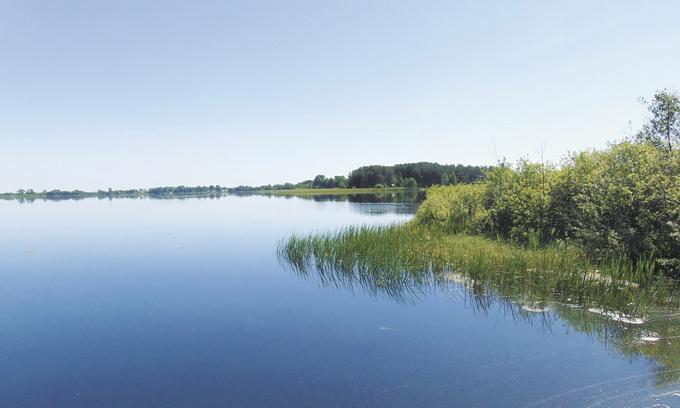 На Поліссі хочуть відродити виробництво сапропелю