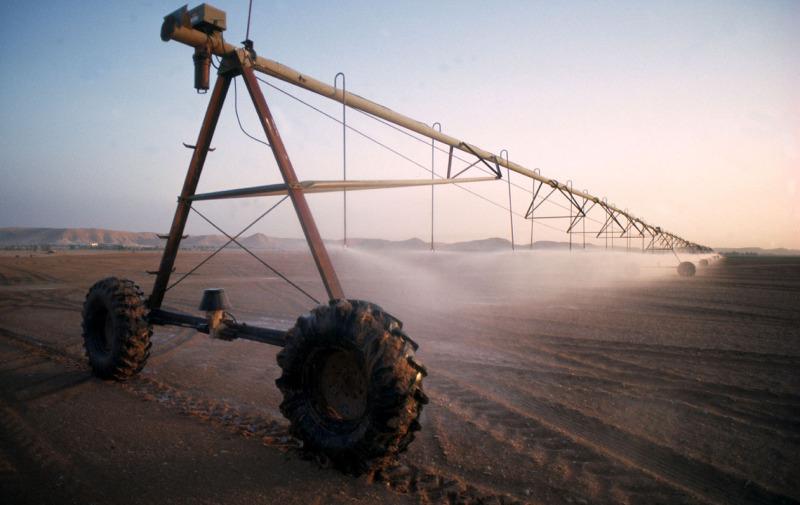 Анексований Крим втратив половину врожаю