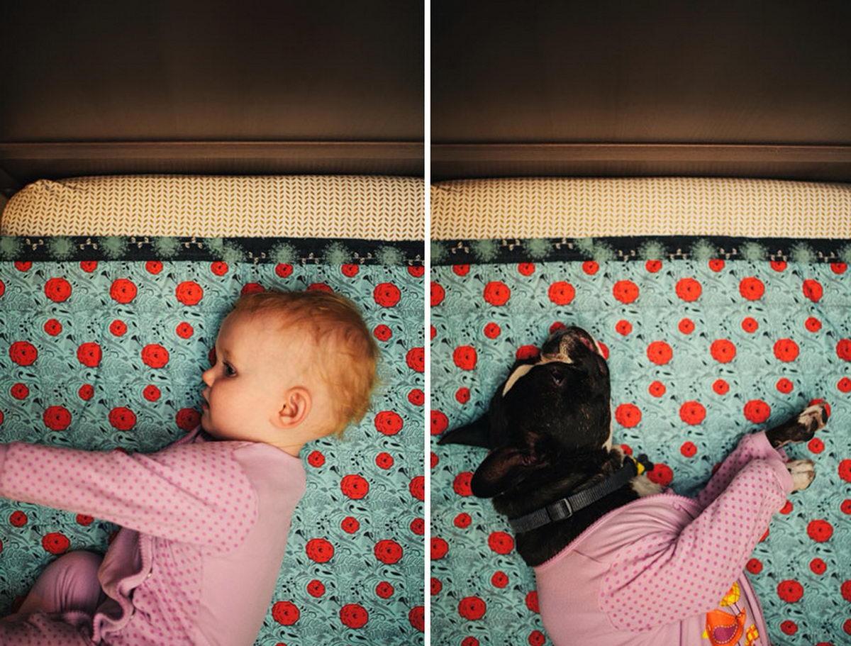 Кумедний сімейний фотопроект: американка  знімає донечку й собаку в тих самих місцях