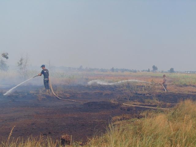 На півночі Волинської області горять торф'яники