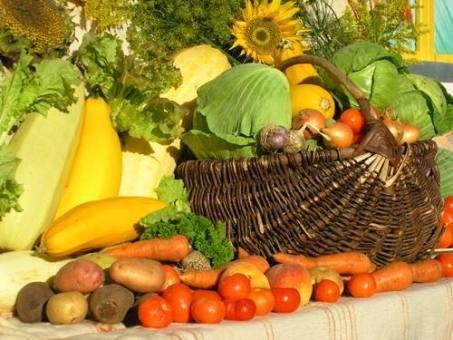 Експорт української агропродукції принесе $ 4-6 млрд виручки
