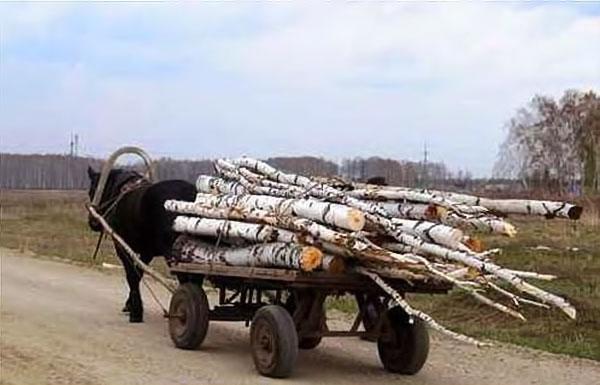 За рік українці знизили споживання електрики на 10%, газу — на 20%