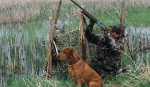 На Волині під час полювання поранили чоловіка