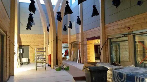 У Фінляндії споруджують найбільшу в світі будівлю з колод