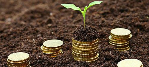 На Рівненщині отримали майже 200 мільйонів гривень платежів за землю