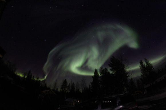 У Швеції північне сяйво «намалювало» на небі вовка